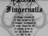 Fingernails-Blizzard euro tour